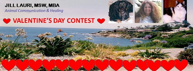 "Enter the ""LOVE MY PET VALENTINE'S DAY CONTEST"""